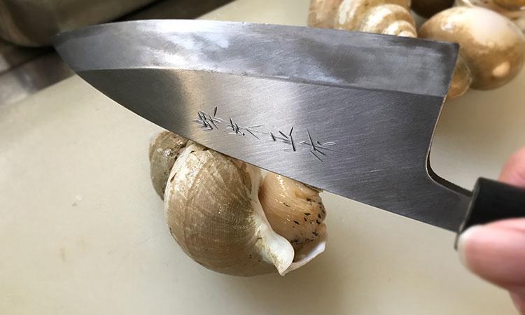 バイ貝 捌き方